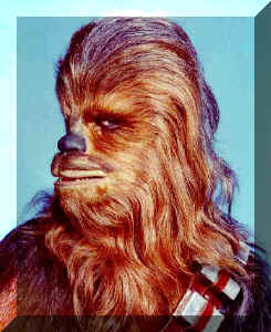 thewookie's Avatar
